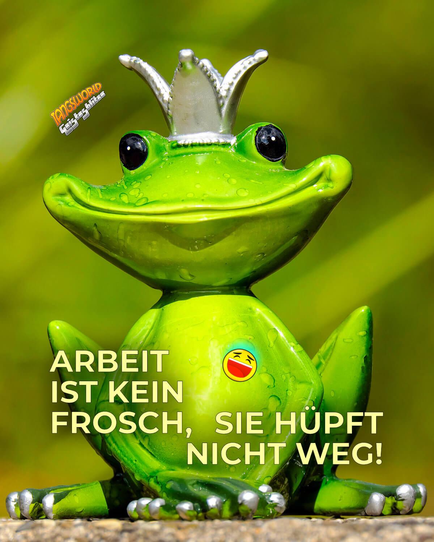 Arbeit ist kein Frosch - sie hüpft nicht weg! - Geistes(bl)witze