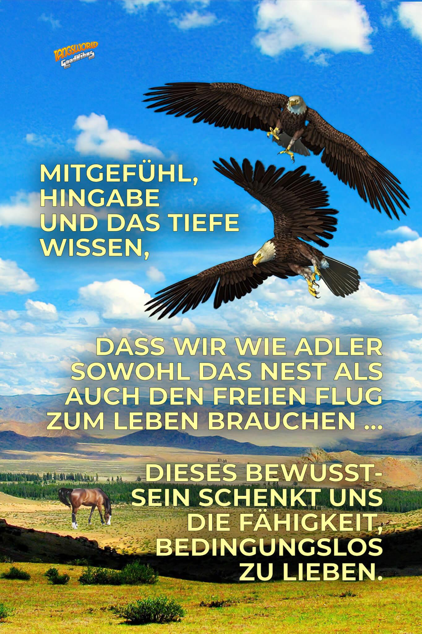 Mitgefühl, Hingabe und das tiefe Wissen, dass wir wie Adler sowohl das Nest als auch den freien Flug zum Leben brauchen … dieses Bewusstsein schenkt uns die Fähigkeit, bedingungslos zu lieben. - GoodVibes