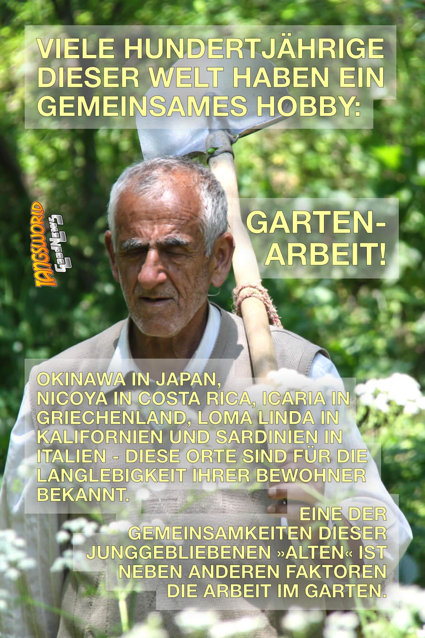Gartenarbeit für ein langes Leben - Viele der Hundertjährigen der Welt haben ein gemeinsames Hobby: die Gartenarbeit. Können wir dadurch unser Leben verlängern und Stress abbauen? - GoodNews