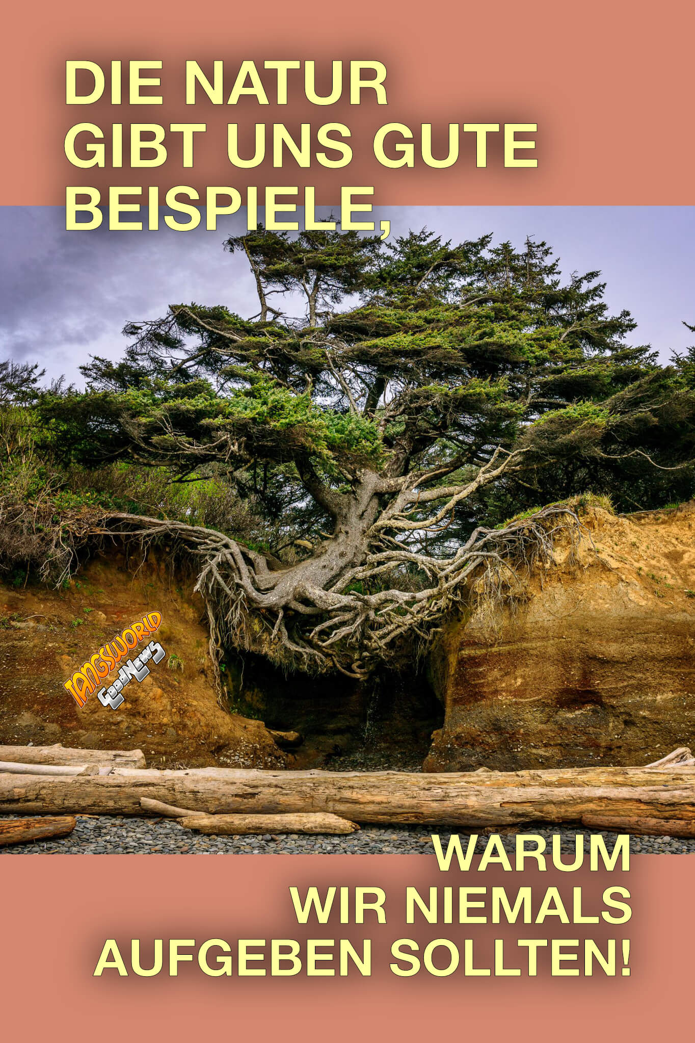 Die Natur gibt uns gute Beispiele, warum wir niemals aufgeben sollten! - GoodNews