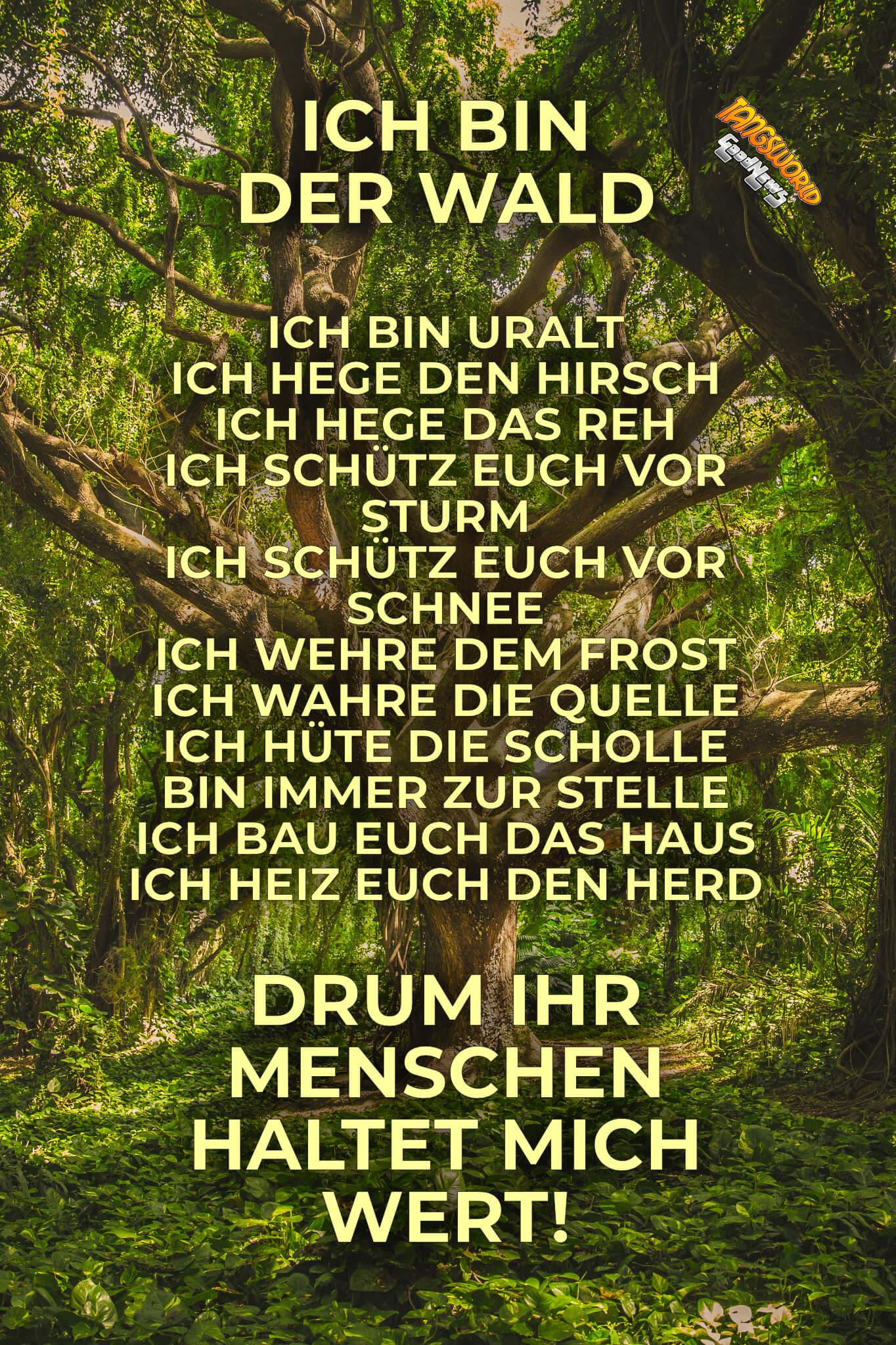 Ich bin der Wald - Inschrift an einem niedersächsischen Forsthaus aus dem 17. Jahrhundert Ich bin der Wald - GoodNews