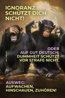 Ignoranz schützt dich nicht! oder auf gut Deutsch: »Dummheit schützt vor Strafe nicht.« - Ausweg: Aufwachen, Hinschauen, Zuhören! - Geistesblitze