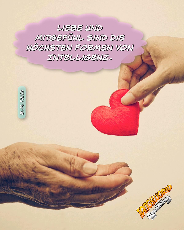 Liebe und Mitgefühl sind die höchsten Formen von Intelligenz - GoodVibes   B.M.Tang