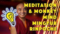 Wir können immer und überall meditieren. Die wahrscheinlich einfachste Meditation der Welt! - Geistesblitze Movie – Mingyur Rinpoche