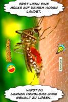 Erst wenn eine Mücke auf deinem Hoden landet, wirst du lernen Probleme ohne Gewalt zu lösen. - Geistes(bl)witze | Konfuzius