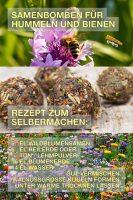 Samenbomben für Hummel und Bienen - GoodNews