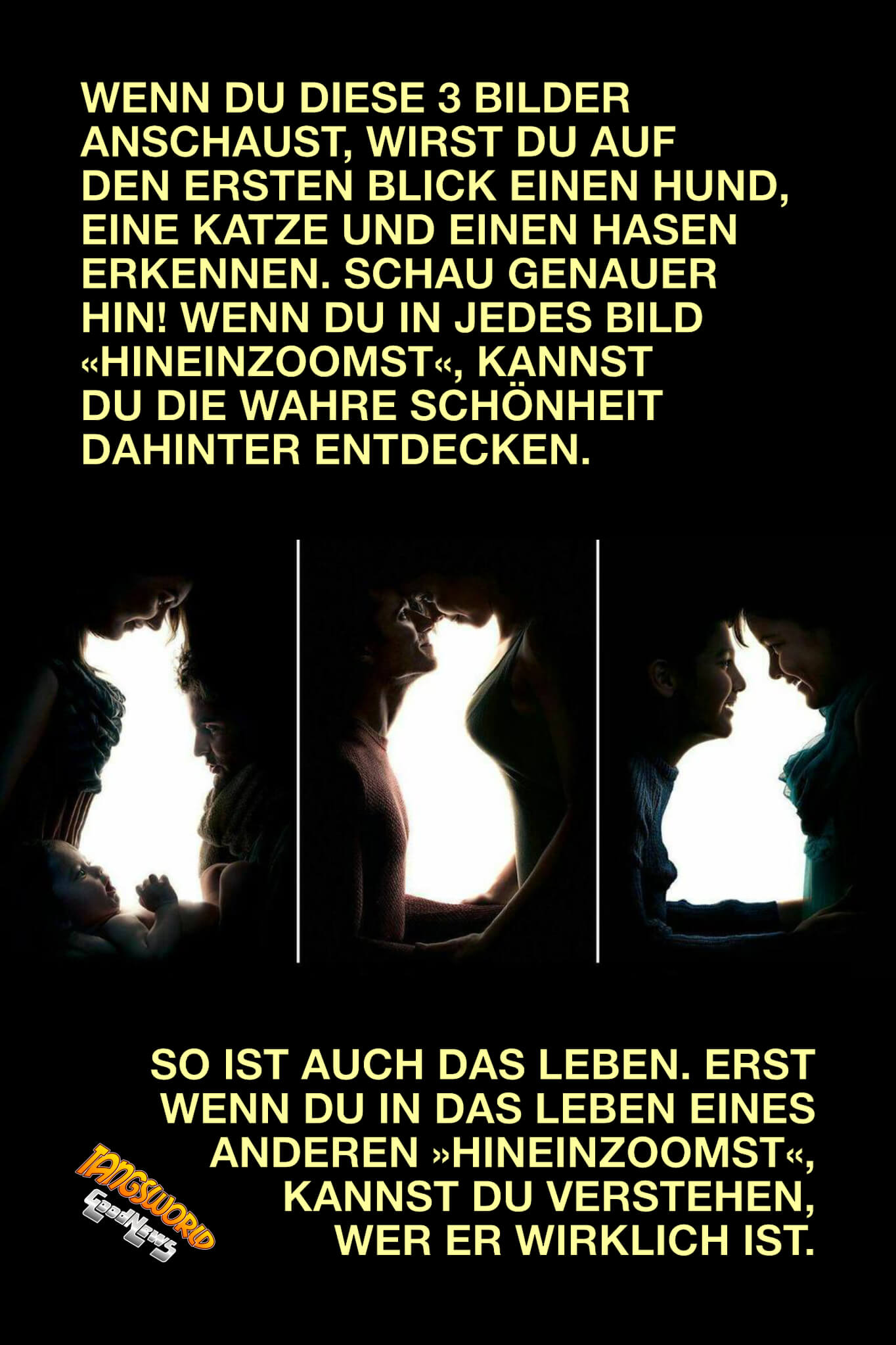 Wenn du diese 3 Bilder anschaust, wirst du auf den ersten Blick einen Hund, eine Katze und einen Hasen erkennen. Schau genauer hin! - GoodNews