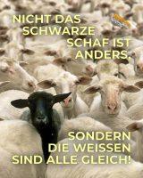 Nicht das schwarze Schaf ist anders, sondern die weißen sind alle gleich! - Geistesblitze
