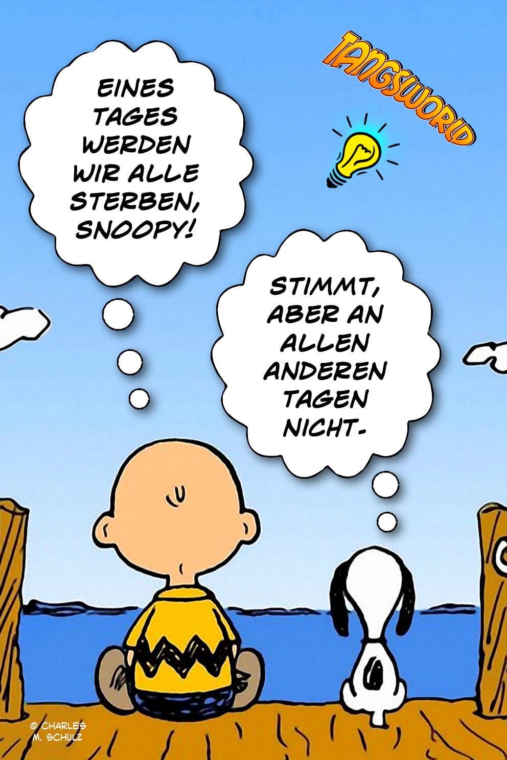 Charlie Brown: Eines Tages werden wir alle sterben, Snoopy! - Snoopy: Stimmt, aber an allen anderen Tagen nicht. - Geistesblitze | Charles M. Schulz