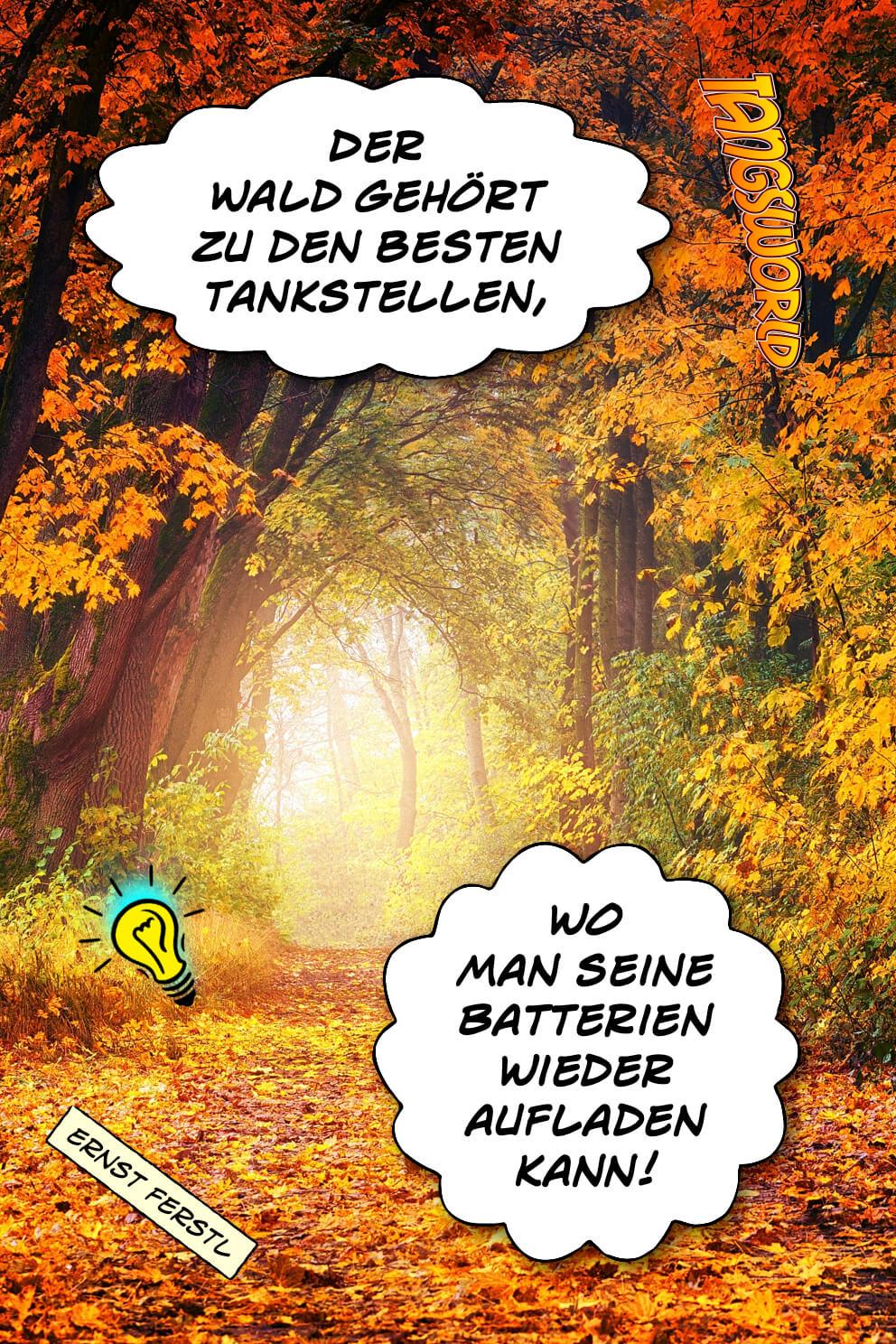 Der Wald gehört zu den besten Tankstellen, wo man seine Batterien wieder aufladen kann. - Geistesblitze | Ernst Ferstl