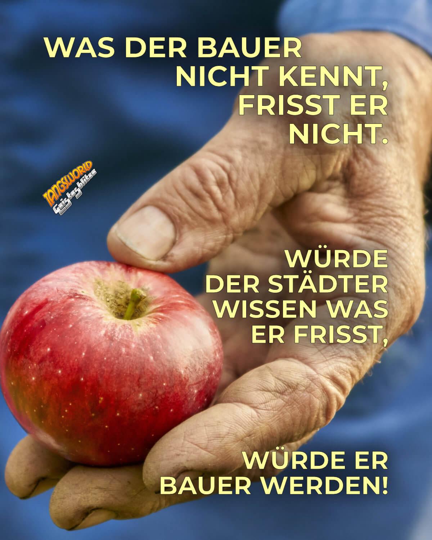 Was der Bauer nicht kennt, frisst er nicht. Würde der Städter wissen was er frisst, würde er Bauer werden! - Geistesblitze