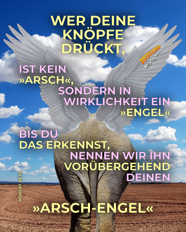 Wer deine Knöpfe drückt ist kein »Arsch«, sondern in Wirklichkeit ein Engel. Bis du das erkennst, nennen wir ihn vorübergehend deinen »Arsch-Engel«. - Geistesblitze | Robert Betz