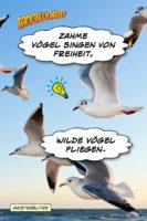 Zahme Vögel singen von Freiheit - wilde Vögel fliegen. - Geistesblitze